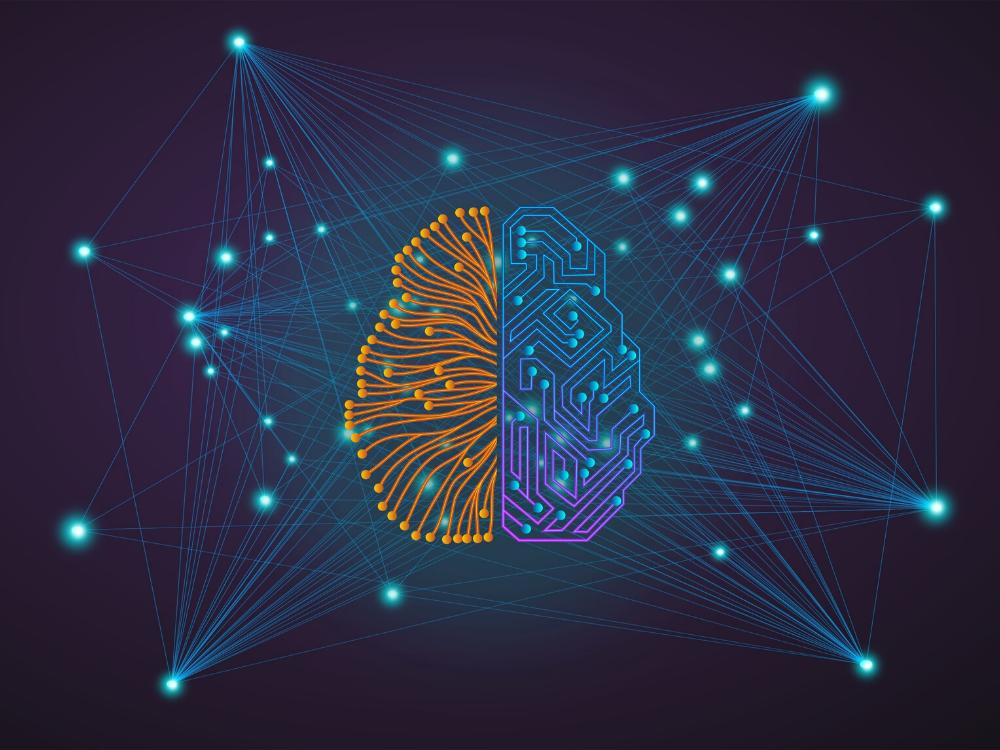 Company's Readiness for AI and Robotics